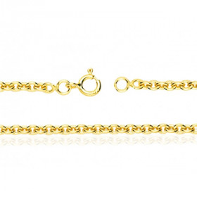 Chaine or jaune 18 carats maille forçat