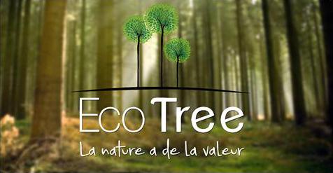 E-joaillerie et l'écologie
