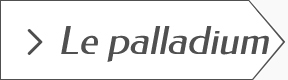 Guide des bijoux en palladium